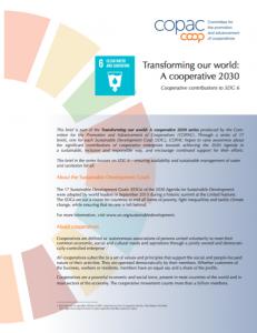 SDG 6 Brief