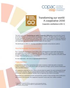 SDG 12 Brief