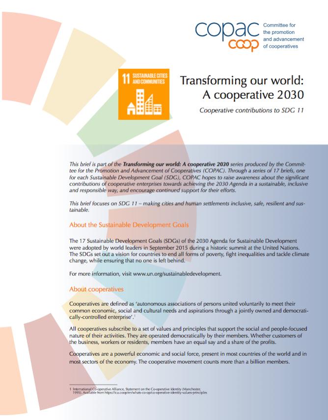 SDG 11 Brief