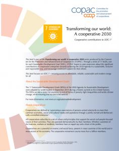 SDG 7 Brief